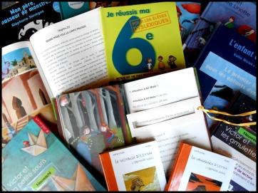 livres-pour-enfants-dyslexiques-ou-en-difficulté-de-lecture
