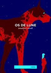 Cullen James vit à New York avec son mari et leur fille. Elle commence à faire d'étranges rêves, où elle se retrouve plongée dans un autre monde, Rondua. Accompagnée d'un jeune garçon et d'un chien géant, elle part à la recherche des os de lune, qui donnent à leur maître un pouvoir sur le monde des rêves. Les journées de Cullen sont dès lors contaminées par ses rêves.