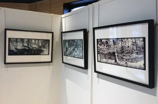 Exposition de photographies du 2 novembre 2019 au 4 janvier 2020