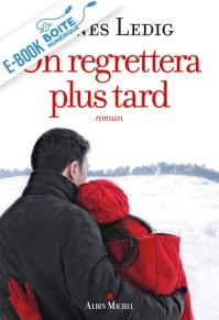 Valentine, institutrice dans un village des Vosges, voit sa vie bouleversée par l'arrivée d'une fille fiévreuse, Anna Nina, et de son père, Eric, meurtri par la mort de sa femme. Elle leur offre l'hébergement et leur ouvre son coeur. (La Boîte numérique)